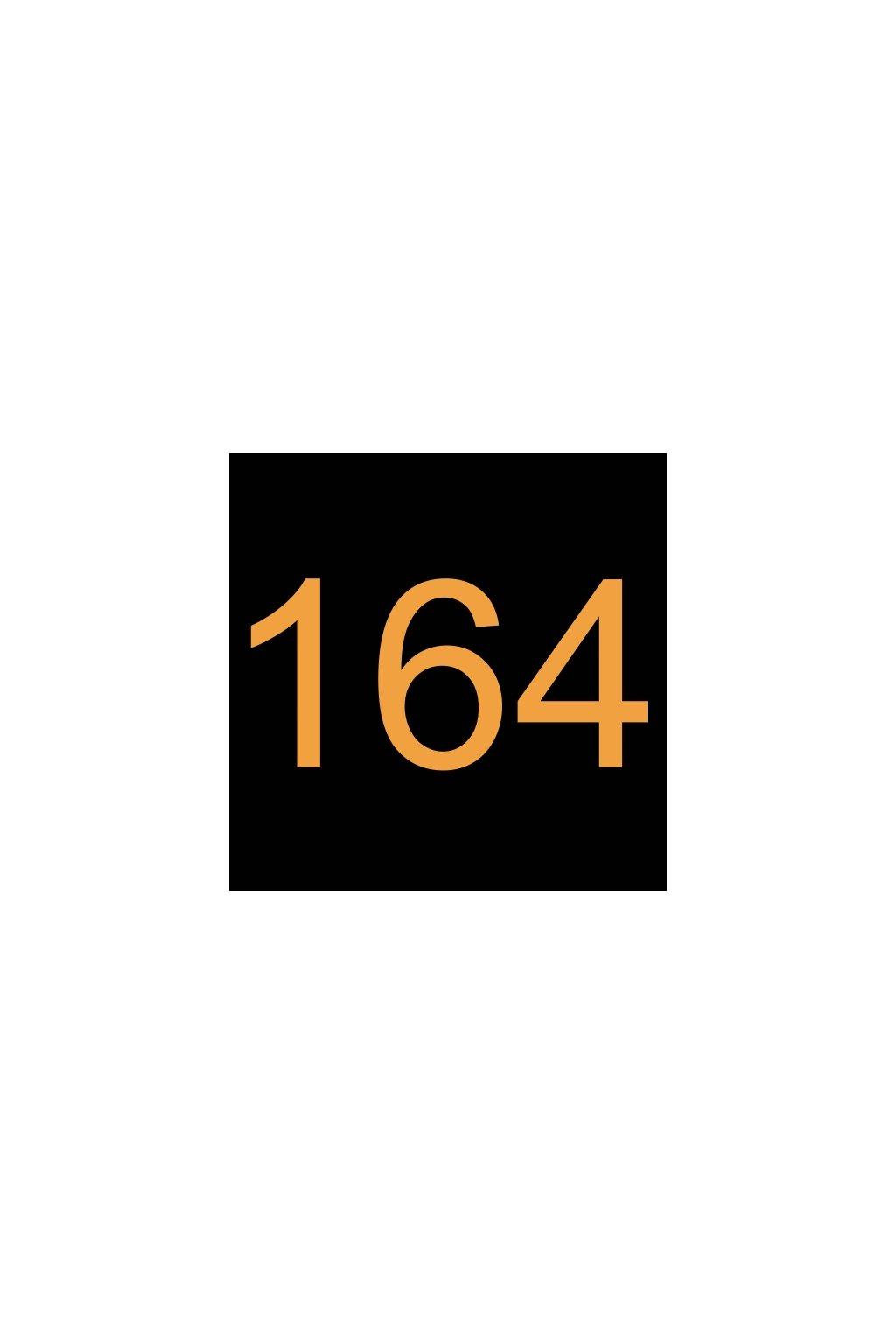N630003 PRUŽINA 164