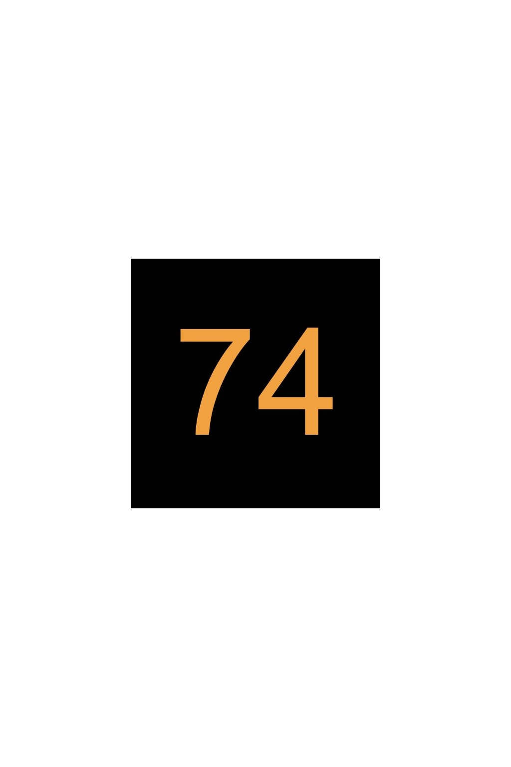 N293999 ELEKTRONIKA A SPÍNAČ 74