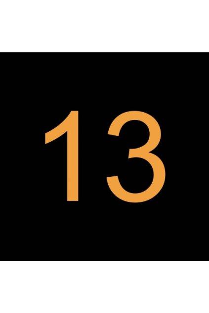 13# N243859 ŠROUB, SPECIÁLNÍ T20 1/4 28 UNF LH